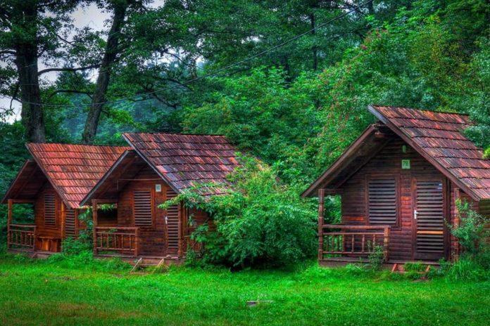 Dünyanın En Güzel Orman Evleri Burada