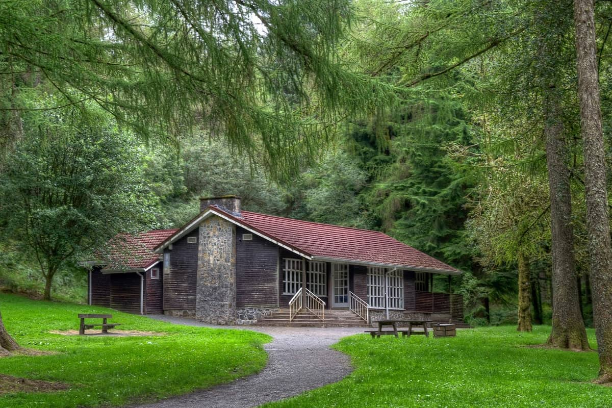 Orman Evleri - Dünyanın En Güzel Orman Evleri Burada