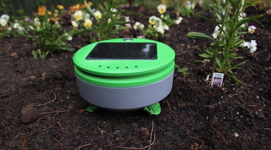 Yabani Otları Ayıklayan Bahçe Robotu